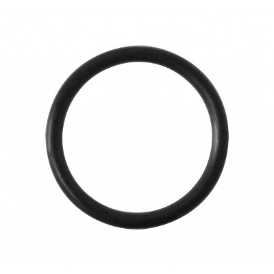 O-RING (FOR 150-010)
